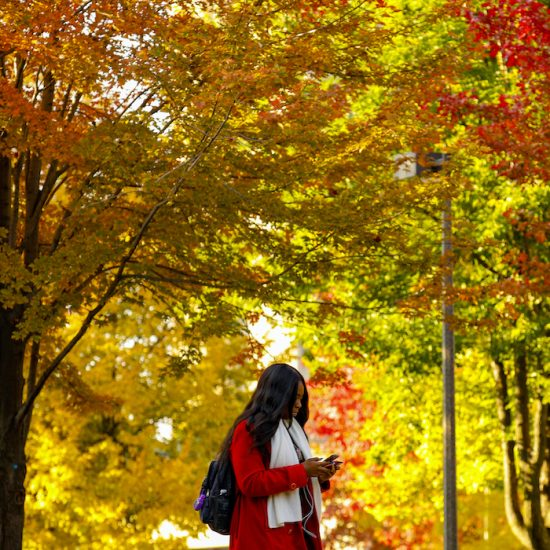 student walking amid fall leaves on UIC's east campus
